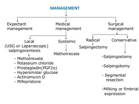 ectopic-pregnancy-34-638